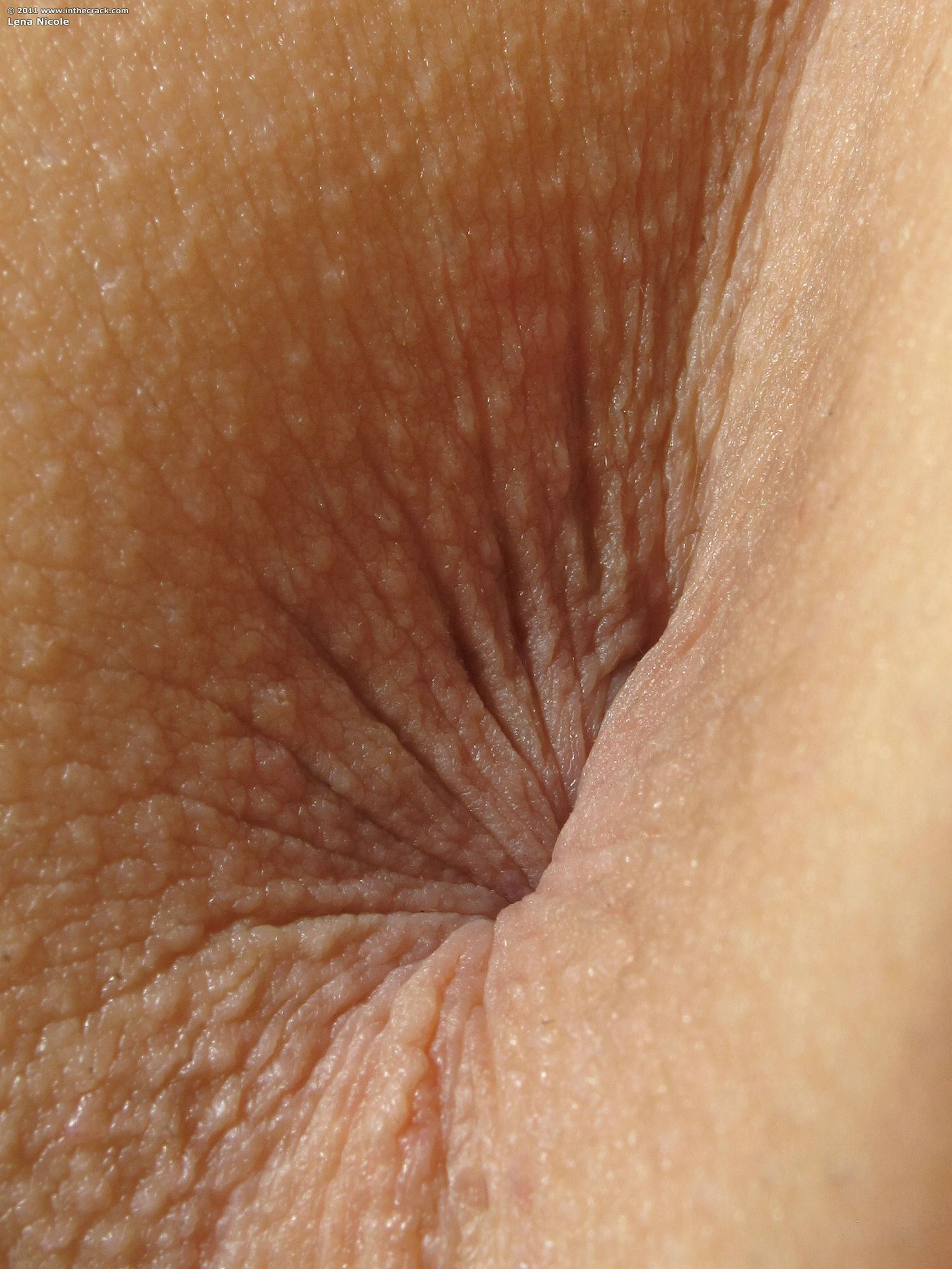 Hot Pussy Close Ups