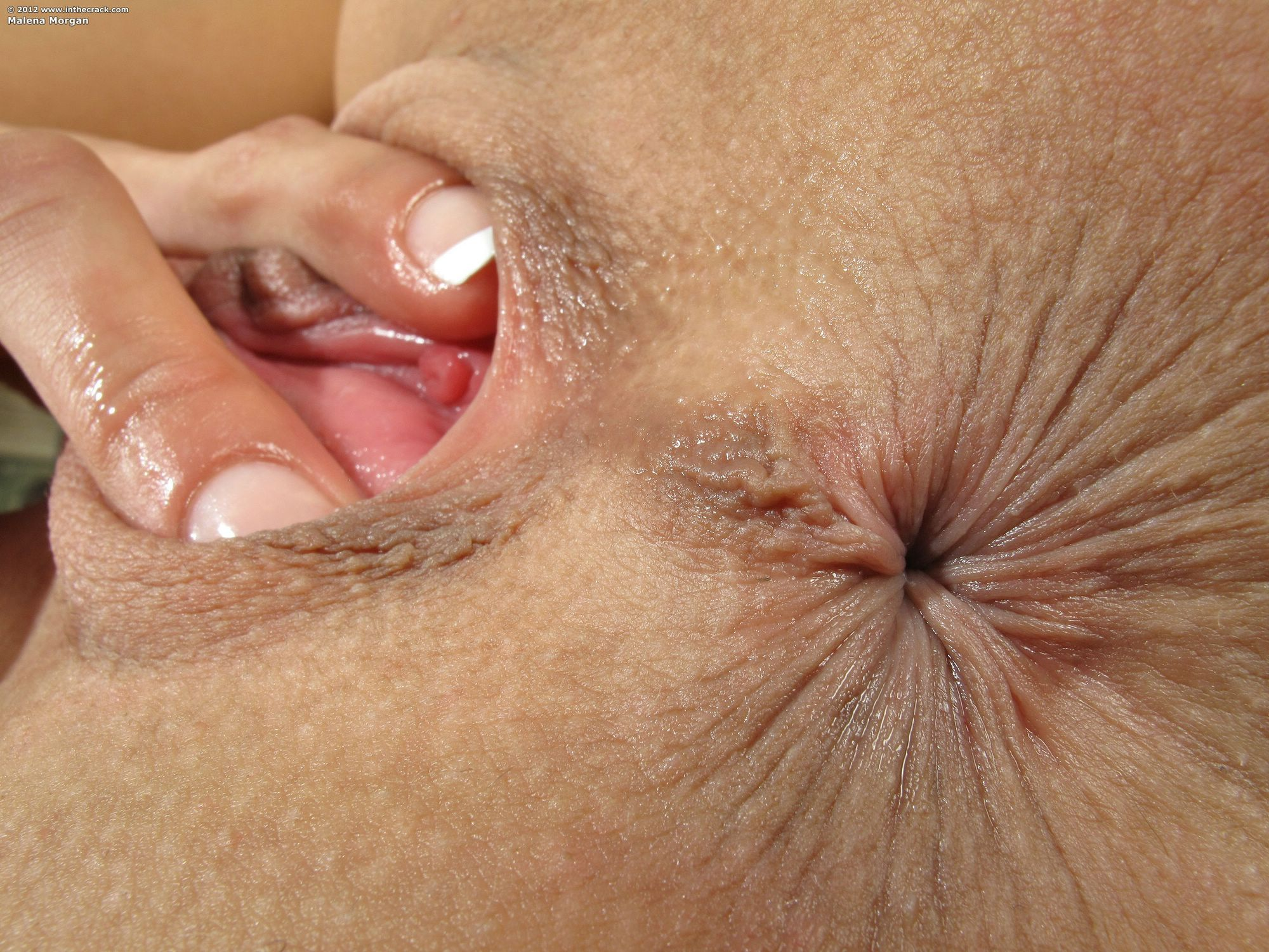 Black anal close up
